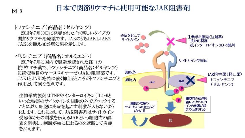 日本で関節リウマチに使用可能なJAK阻害剤(図-5)